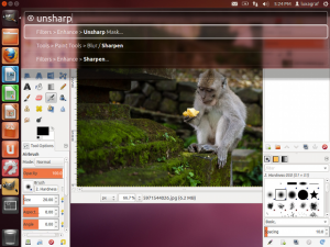 The HUD in Ubuntu 12.04